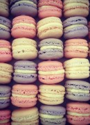 Serve Macaron as a sweet treat with Champagne or in small bags as favours
