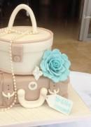 Taupe & Aqua Suitcase & Vanity case